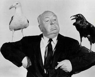 Hitch and Birds
