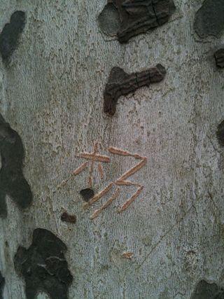 Treewriting